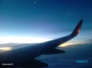 Wing View of JT659 | Doc: Fazword