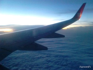 Wing View of JT659 |Doc: Fazword