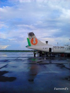 Tail View, Wings Air & Citilink | Doc: Fazword