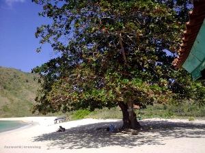 Pantai Mawun Lombok | Doc: Fazword