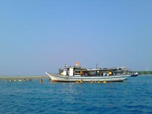 Snorkeling | Photo: fazword