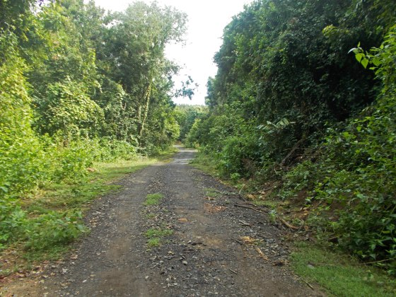 Jalan Dalam TWA Gunung Tunak | fazword